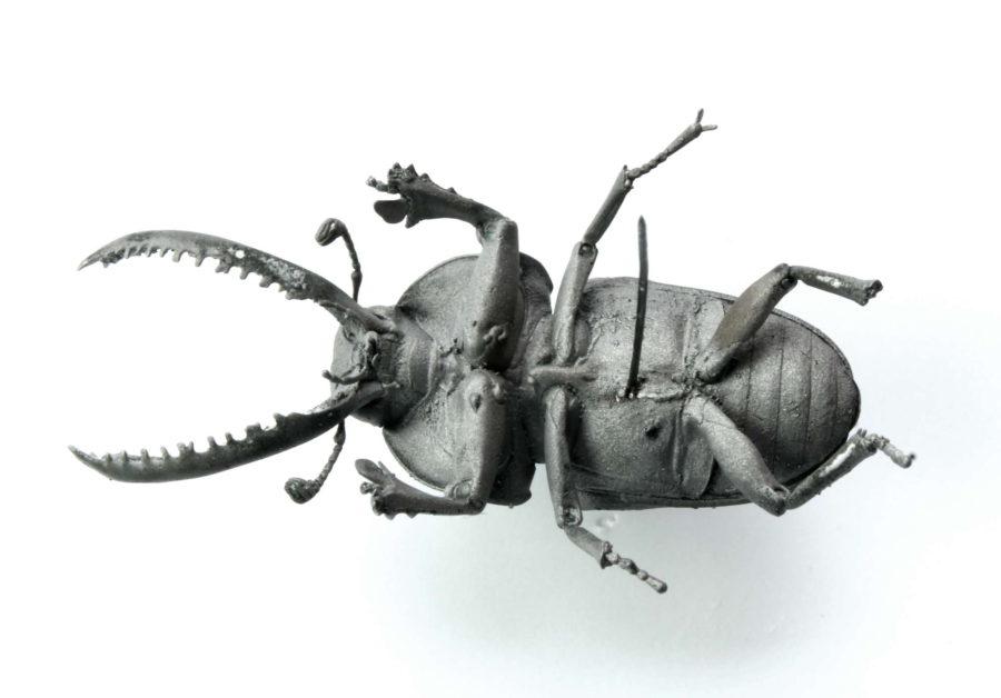 Käfer | 2017
