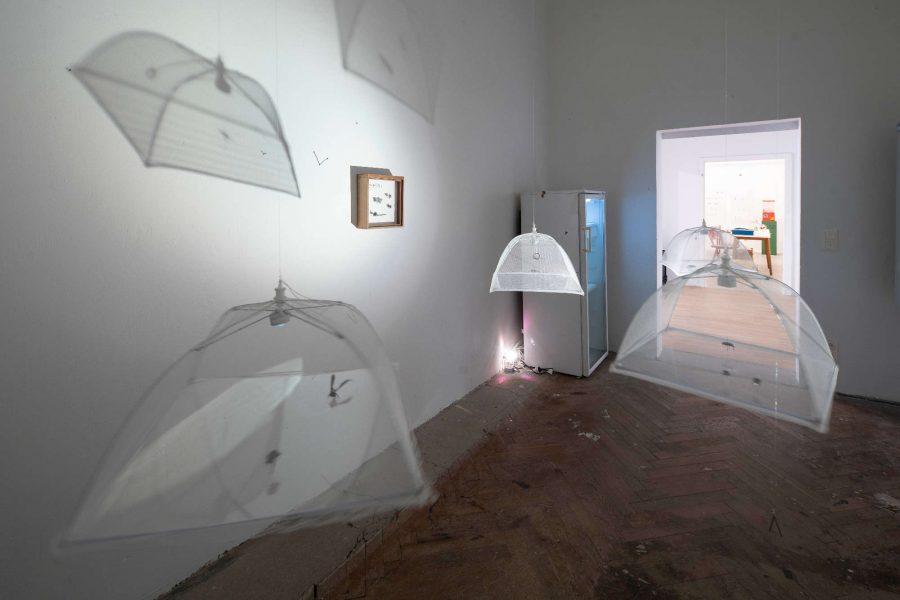 Volkspark Galerie | Raum 1 | 2018 | Foto: Phillip Hiersemann